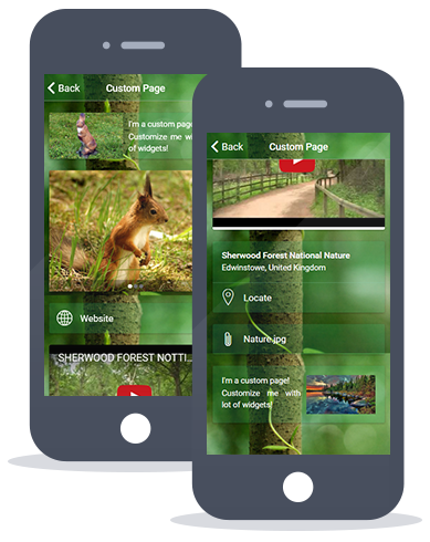 app-maker-custom-page-big-appli.fr